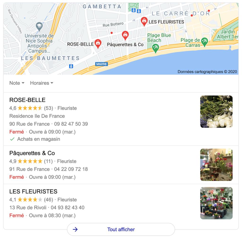 requête google my business google maps